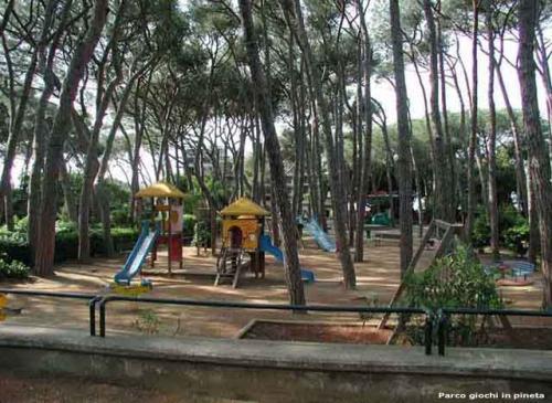 Parco giochi in pineta